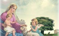 12 Đức Tính Thời Thơ Ấu Của Mẹ Maria- Đức Mẹ Maria có bao nhiêu tước hiệu- Đức Mẹ Maria