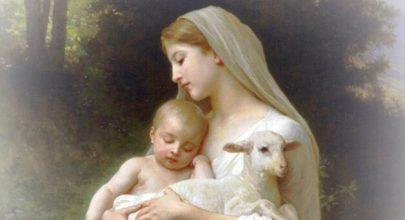 Mẹ đã cứu con thoát khỏi giáo phái, mẹ không bỏ rơi con, giáo phái