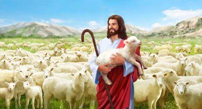 Chiên Thiên Chúa, cầu nguyện cùng Chúa