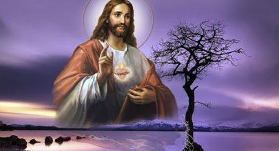 thánh tâm Chúa Giêsu